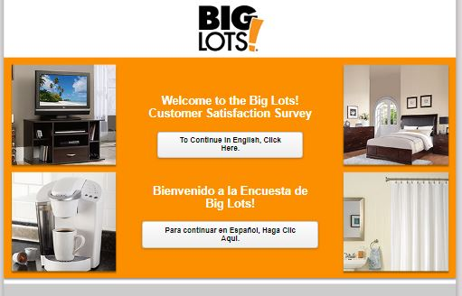 Big Lots! Survey: Giving Excellent Customer Service - The Online