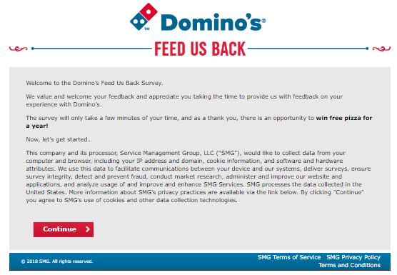 Domino's Survey: Don't waste your time win free pizza for one year