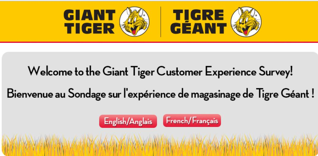 Giant Tiger Customer Satisfaction Survey