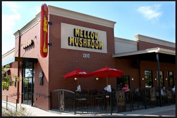 mellow mushroom customer survey